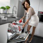 2 loại máy rửa chén nhật nội địa bãi có thể mua